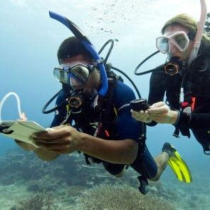 PADI Under Water Navigation Specialty Course